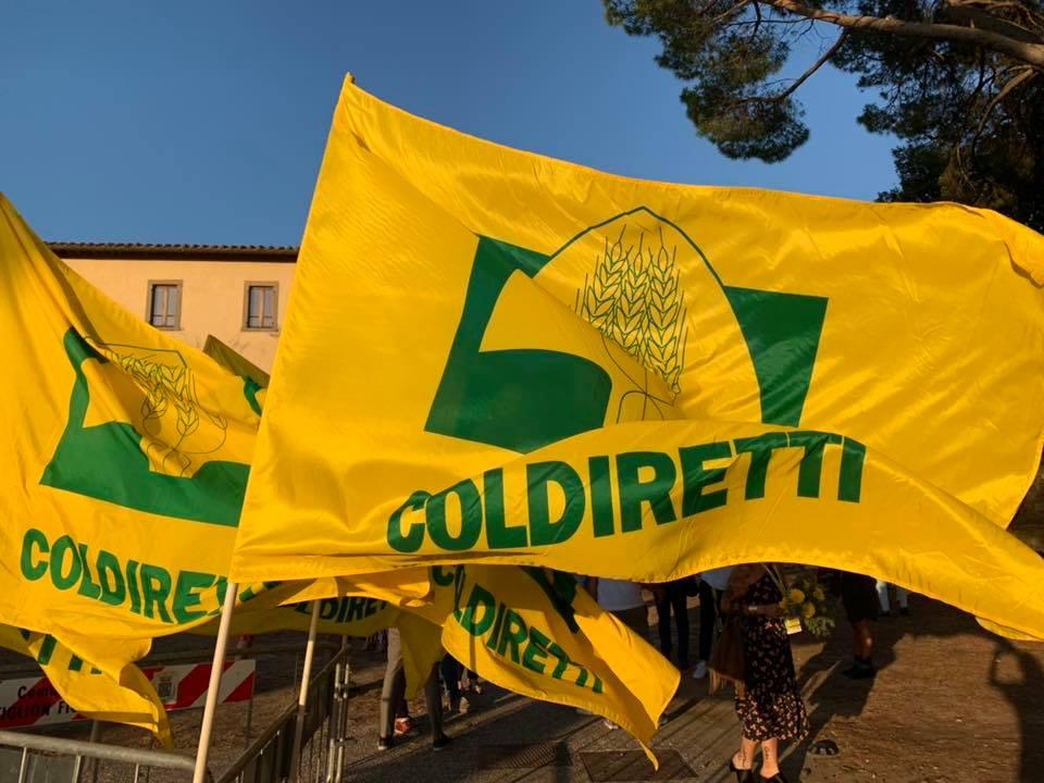 linkiostrovivo-magazine-coldiretti-agricoltura-bio-toscana-castiglion-fiorentino