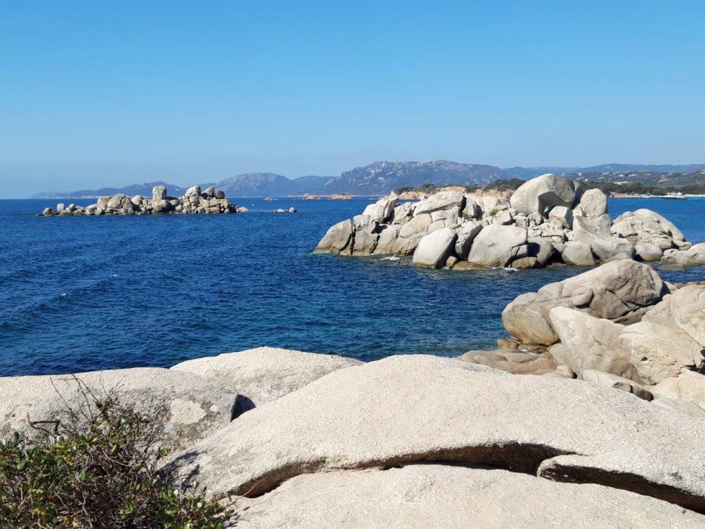 linkiostrovivo-magazine-corsica-estate-bio-natura-mare-delfini-ambiente