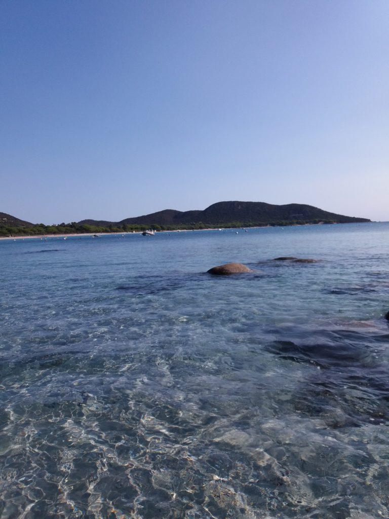 linkiostrovivo-magazine-estate-corsica-natura-ambiente-biomare-delfini