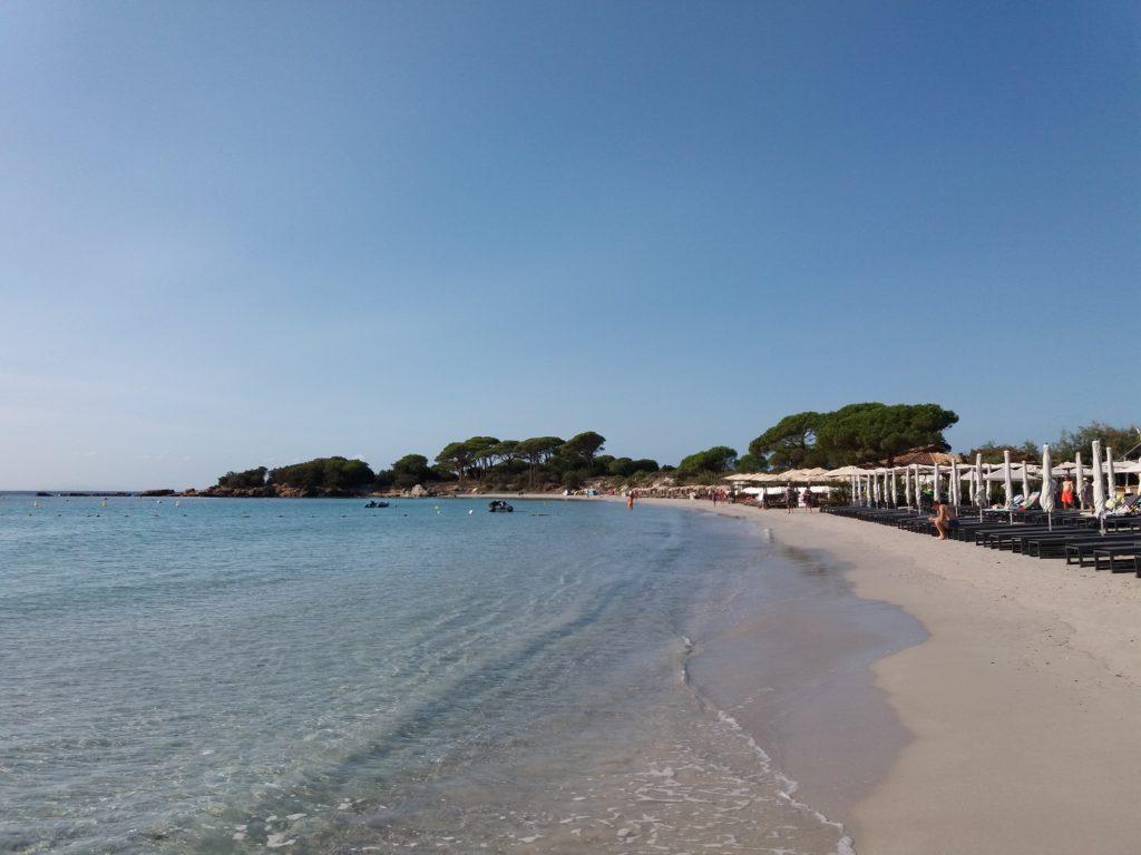linkiostrovivo-magazine-corsica-natura-bio-mare-delfini-estate-isola